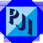 Pugajinou International Consulting Logo